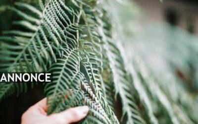 Skab liv i din have med fine hækplanter